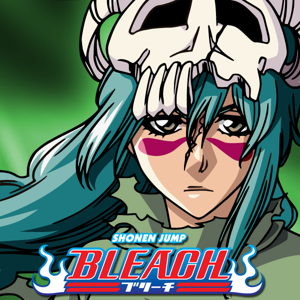 Bleach: Season 13