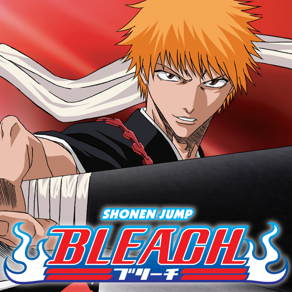 Bleach: The Entry