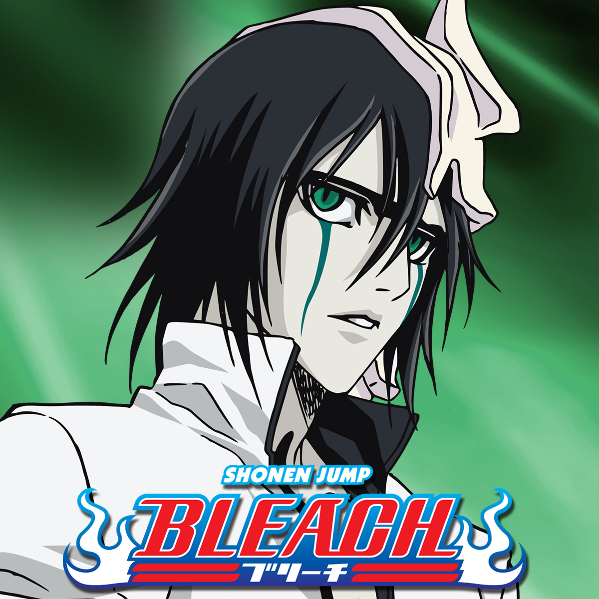 Bleach: Season 6