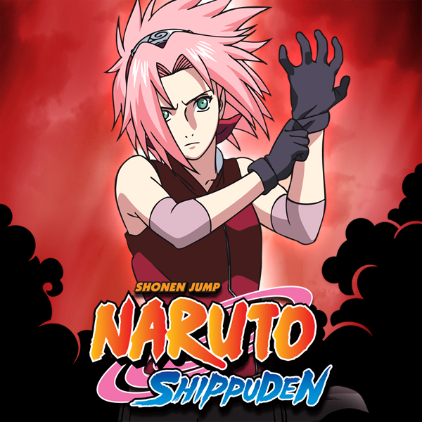 Naruto Shippuden, Season 2, Vol.4