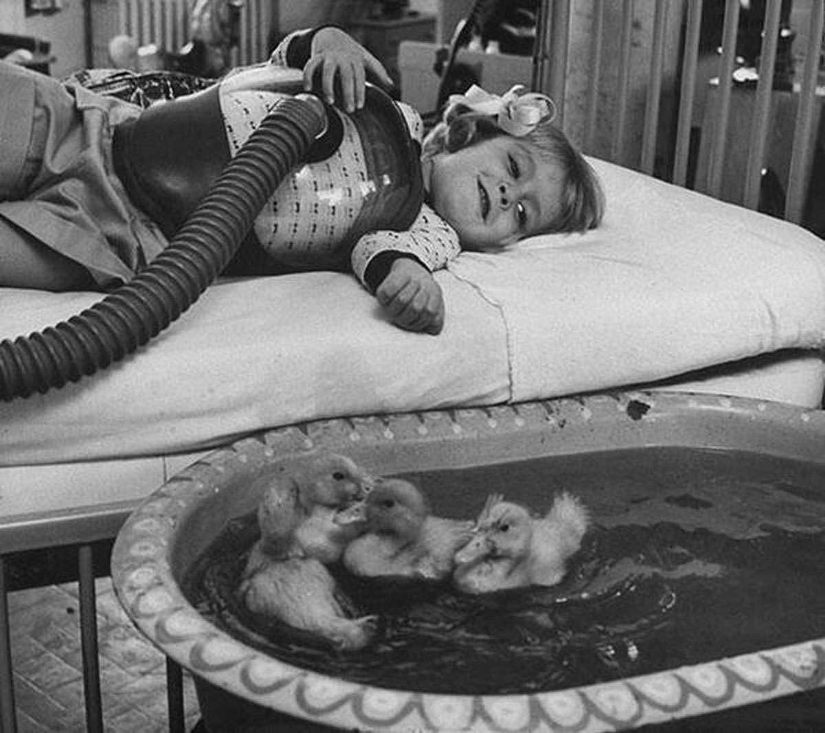 1956 Animal Therapy