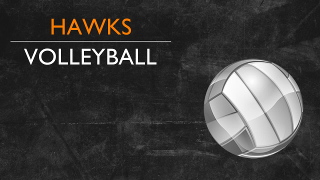 Hawks Volleyball Fly past Lutheran High Westland in 3