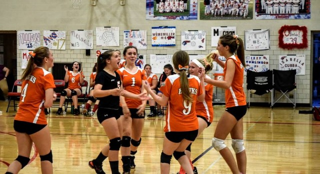 Volleyball Falls in District Semifinal