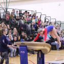 Girls Gymnastics WN vs Wawasee 1-17-17