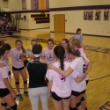 2014 Dig Pink Volleyball Night