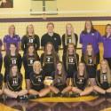 2015 Golden Eagles Volleyball Teams
