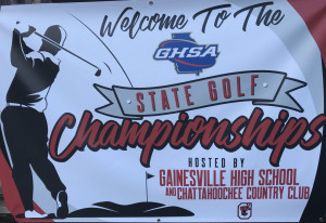 State2017Banner