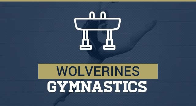 Gymnastics takes 5th at State Championships