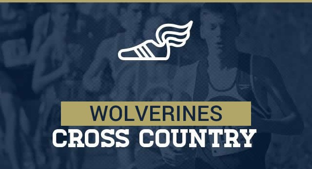 Boys & Girls Cross Country Advance To State Championships