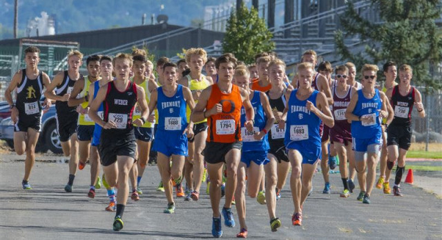 Tiger Runners have strong showing at City/County