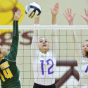 Barberton and Firestone Volleyball