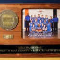 2014 Girls Basketball Section 6AAA Champ and State Participant