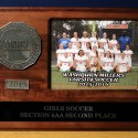 2015 GIrls Soccer Section 6AA 2nd Place