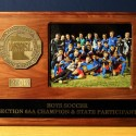 2015 Boys Soccer Section 6AA Champ and State Participant