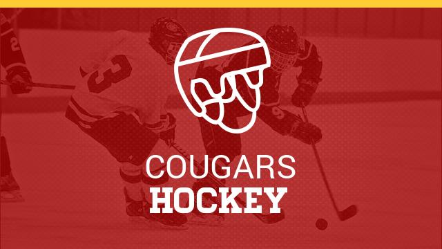Hockey Team Qualifies for State!
