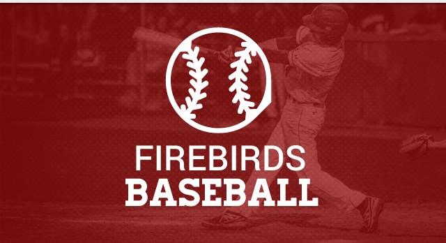 Upcoming Baseball Camps