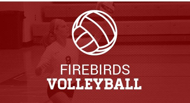 Volleyball Information