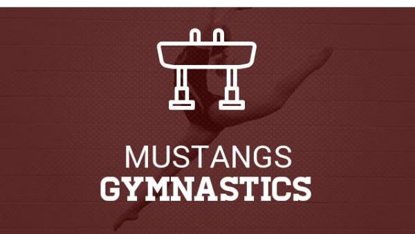 Coed-Gymnastics.jpg