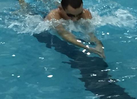 Bull Dog Swimming