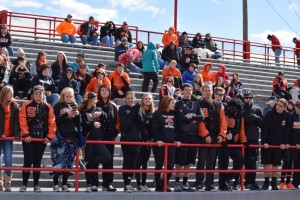 Tiger Student Section