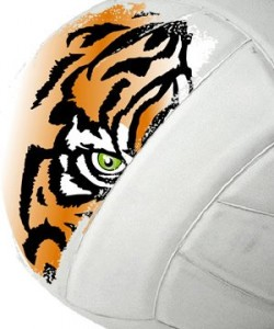 TigerVolleyball_300