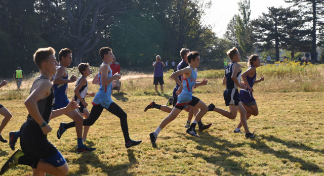 VASJ CROSS COUNTRY – Young runners lead Vikings at district; Smith closes out solid career on girls side