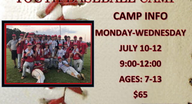 2017 Fox Creek Summer Youth Baseball Camp Info