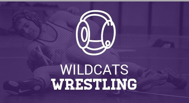 Wrestling Conditioning Info