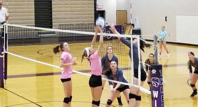 Volleyball: Cats knock off Tigers in 3 sets