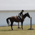 CHS Equestrian – Wayne County Fairgrounds (17 Sep 17)