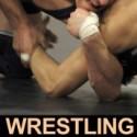 s-wrestling