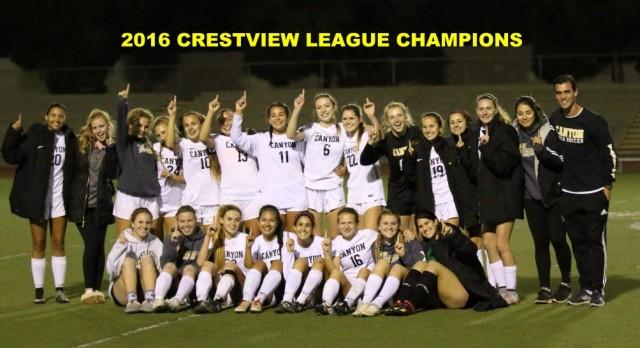 Girls Soccer League Champs!