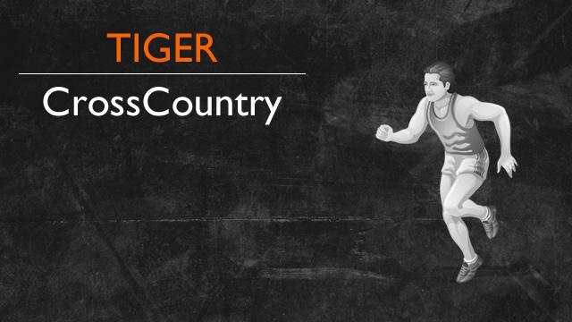 Tigers Bring Home Many Post Season Honors