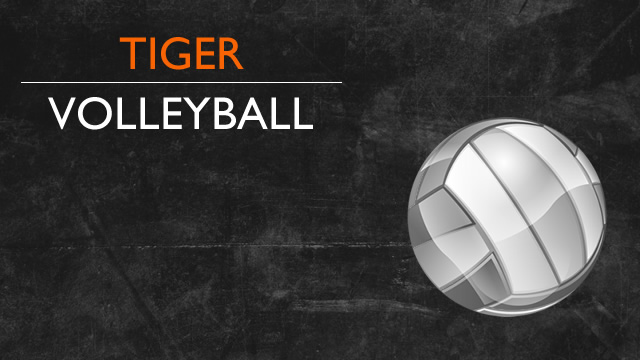 Muskegon Chronicle 2014 All-Area girls volleyball Dream Team announced. Tigers Schuitema & Wood gets the nod