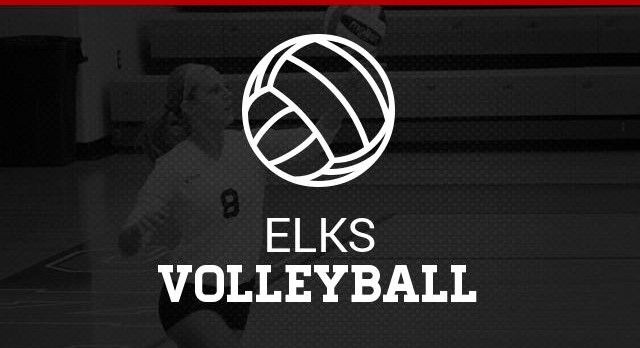Lady Elk Volleyball 2016 Honors