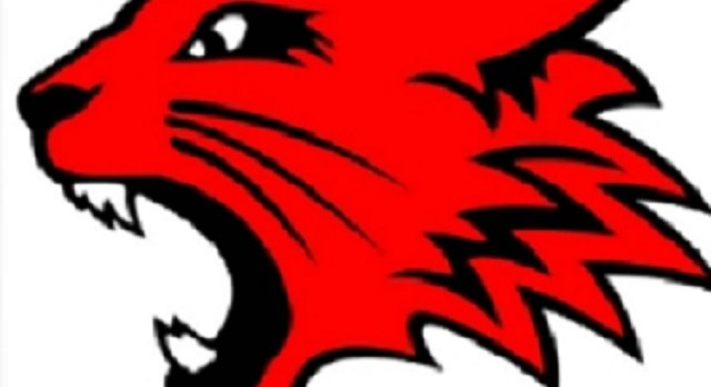 """Bath County Basketball's """"Camp with the Cats"""" is Set for May 23-26"""
