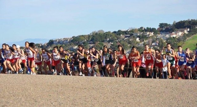 Cross Country takes on CCS at Crystal Springs course in Belmont