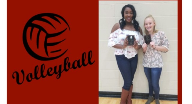 Lady Titan's have 2 named to All Area Teams