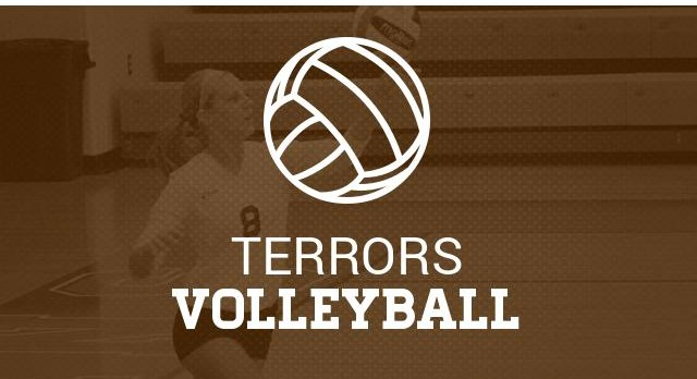 Volleyball and Camp Tryout Info
