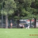 Boys varsity soccer September 9 vs Grand Junction