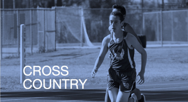 Cross Country Competes at League Finals