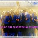 2016 GIRLS VARSITY SOFTBALL SECTIONAL CHAMPS