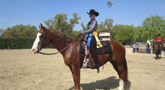 Equestrian Results