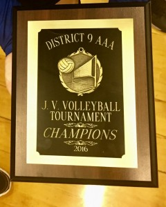 jv volleyball2