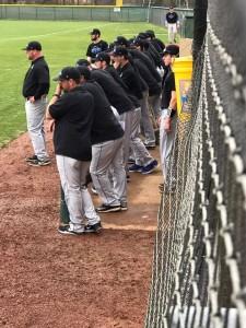 baseball 2017 3