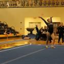 Gymnastics vs. Rockford Jan. 6