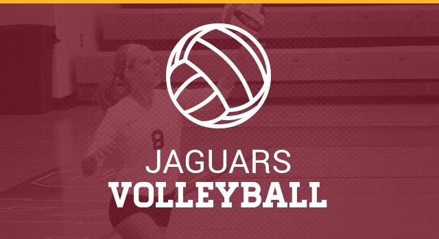 Maynard Jackson HS Varsity and Junior Varsity Volleyball Team 2017