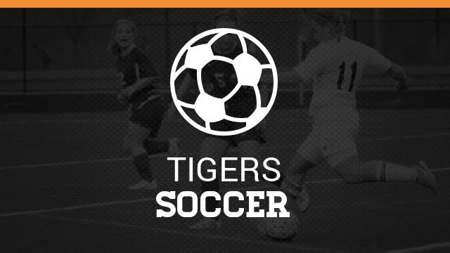 South High Girls Soccer Website Link