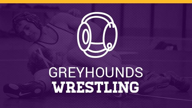 Wrestlers Advance to State