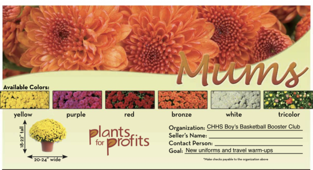 Boy's Basketball is Selling Potted Mums as Fundraiser